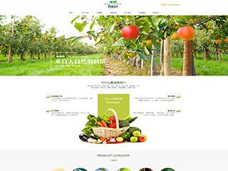 预览农业网站模板的PC端-模板编号:594