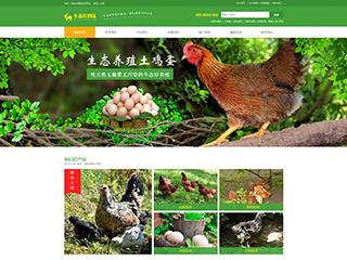 预览农业网站模板的PC端-模板编号:597