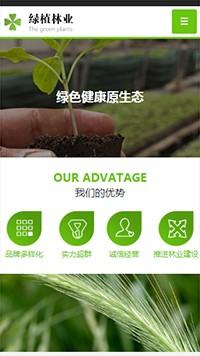 预览农业网站模板的手机端-模板编号:601