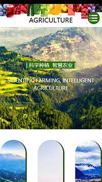 预览农业网站模板的手机端-模板编号:618
