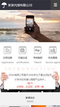 预览网站模板的手机端-模板编号:272