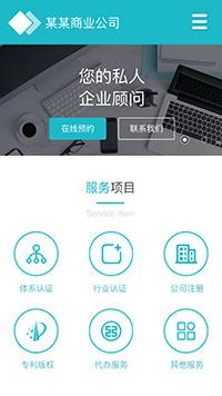 预览商业网站模板的手机端-模板编号:296