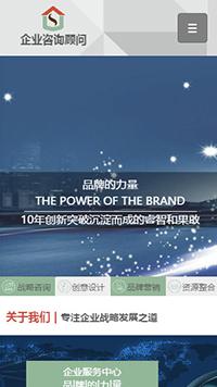 预览商业网站模板的手机端-模板编号:293