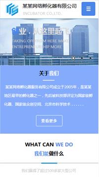 预览商业网站模板的手机端-模板编号:301