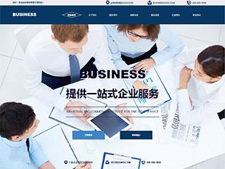 预览商业网站模板的PC端-模板编号:275