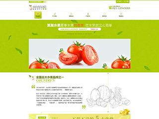 预览食品网站模板的PC端-模板编号:1655