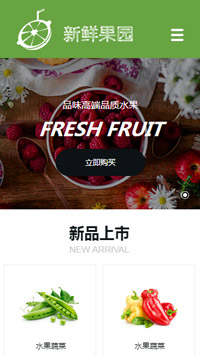 预览食品网站模板的手机端-模板编号:1663
