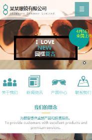 预览眼镜网站模板的手机端-模板编号:1721