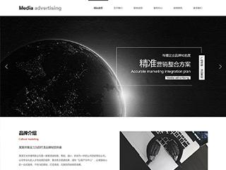 泰安建網站-泰安http://www.wsyztc.live/tpl/pc/pc044/網站建設