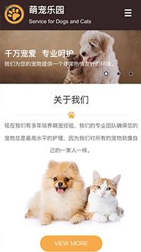 预览宠物网站模板的手机端-模板编号:317