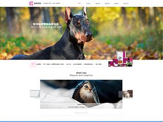 预览宠物网站模板的PC端-模板编号:332