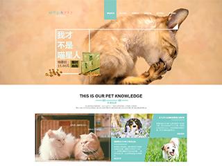 预览宠物网站模板的PC端-模板编号:329