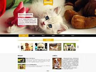 预览宠物网站模板的PC端-模板编号:316