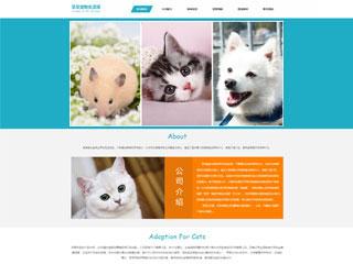预览宠物网站模板的PC端-模板编号:327
