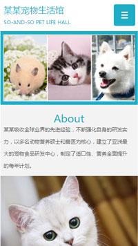 预览宠物网站模板的手机端-模板编号:327