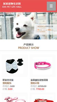 预览宠物网站模板的手机端-模板编号:320