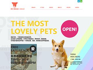 预览宠物网站模板的PC端-模板编号:324