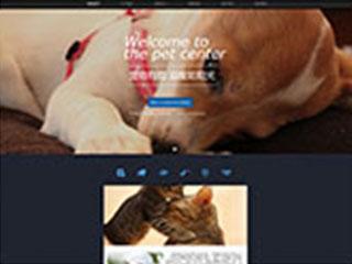 预览宠物网站模板的PC端-模板编号:312