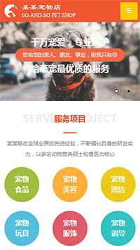 预览宠物网站模板的手机端-模板编号:328