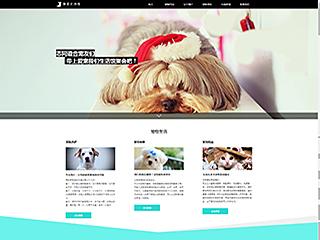 预览宠物网站模板的PC端-模板编号:330
