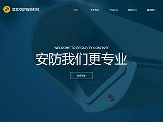 预览安防/监控器材网站模板的PC端-模板编号:2437