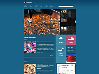 预览鞋帽网站模板的PC端-模板编号:2481