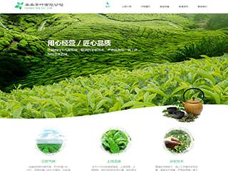 预览茶叶网站模板的PC端-模板编号:2538