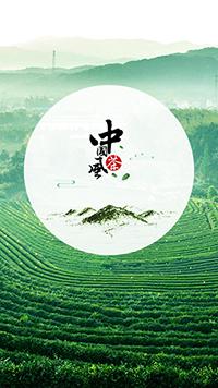 预览茶叶网站模板的手机端-模板编号:2536