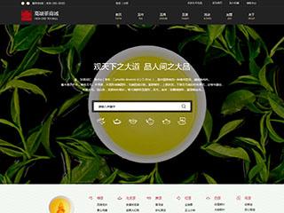 预览网站模板的PC端-模板编号:2856